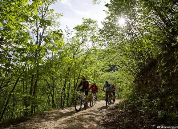 Alla ricerca di nuovi trail…